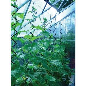 Plantspiral